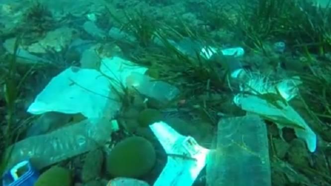 'Cannes' je dit geloven? Schokkende beelden van afval op zeebodem mondaine badplaats