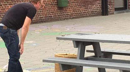 Net bij start 'Week van de Bij' strijken 15.000 bijen neer op deze speelplaats