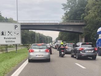 Nederland blijkt het op een na snelste land om in te rijden, België in middenmoot