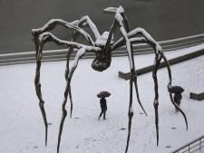 Gigantische spin verwelkomt bezoekers van museum Voorlinden
