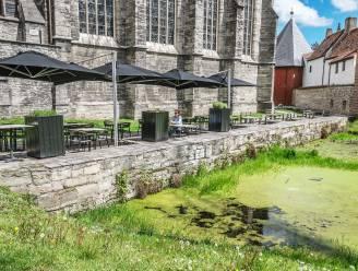 Ook N-VA en Vlaams Belang willen dat waterpartij aan Onze-Lieve-Vrouwekerk behouden blijft