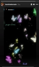 Leontine deelt de vlinders van Marco in haar Instagram Stories