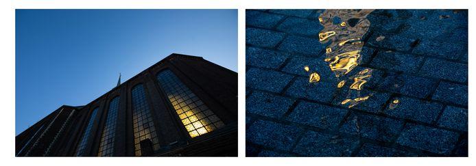 Enkele van de beelden die fotografe Mine Dalemans maakte.