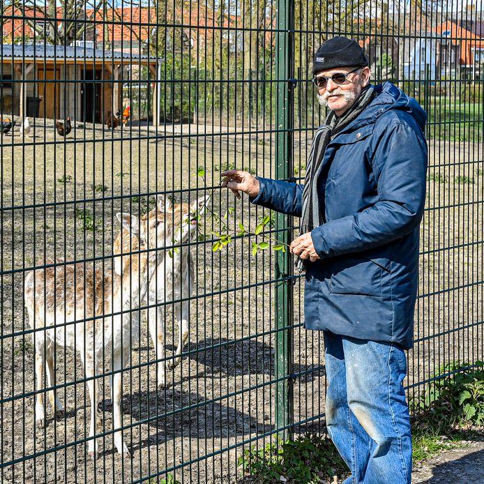 20210409 - DINTELOORD _ FOTO: Pix4Profs/Peter Braakmann - Het hertenkamp in Dinteloord zit zonder gras. Het is wel ingezaaid maar niet goed doorgekomen of platgestampt door de herten. (Foto: Kees van der Wegen bij het hertenkamp)