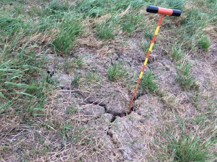 Door de langdurige droogte ontstaat scheurvorming in de dijken, zoals hier bij IJsselmuiden.