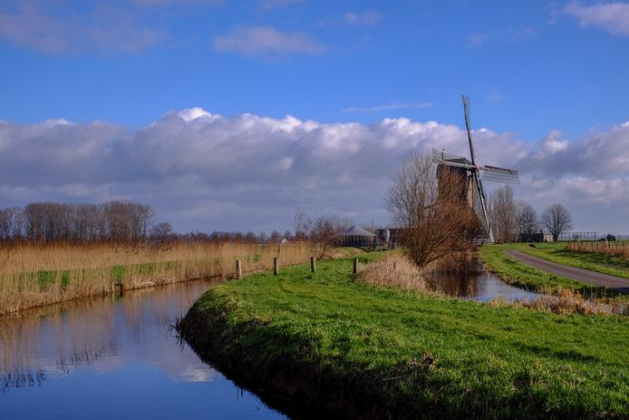 Een deel van De Kornse Boezem, ten noorden van Dussen, met de Noordeveldse Molen.