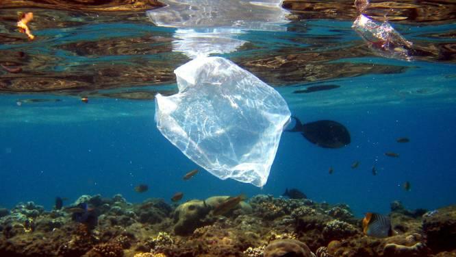 Er drijven vijf biljoen stukjes plastic in zee