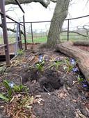 Deel van de vernielde Boomtuin in het buitengebied van Diepenheim