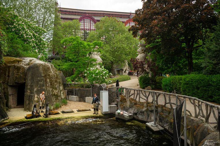De Zoo van Antwerpen. Beeld Zoo Antwerpen