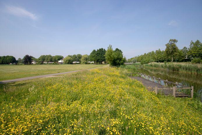 De ligweide van het Veenendaalse stadspark.