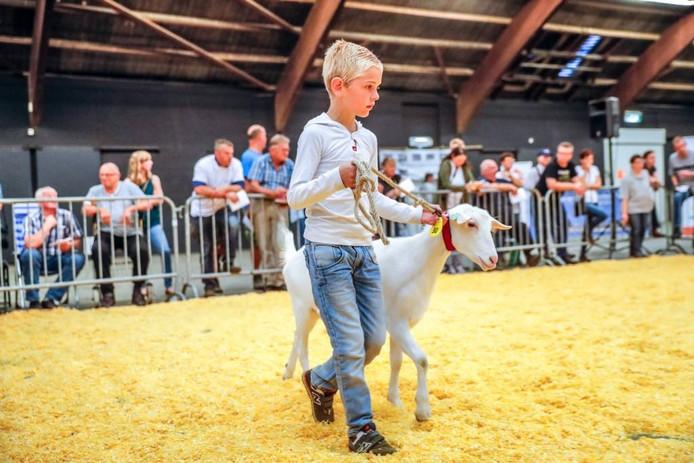 Johannes toont zijn geit aan het publiek in de IJsselhallen.