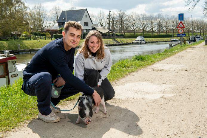 Varkentje Korneel en zijn baasjes Niels en Lotte Boone gaan met plezier wandelen.