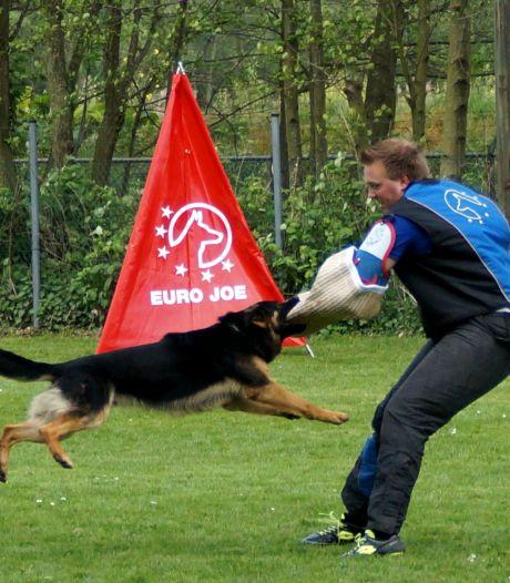 Hondenverenigingen moeten weg van 'droomplek' aan de Zeedijk in Etten-Leur
