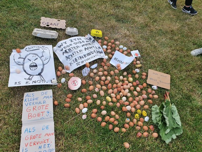 'Un oeuf = un oeuf': het protest van burgerbeweging Grondrecht lokte 400 sympathisanten naar de Boeienweide op Linkeroever. Zij schreven hun frustraties over de kwestie neer op een (hardgekookt) ei.