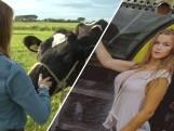 Laura uit Rockanje doet mee aan boerinnen missverkiezing