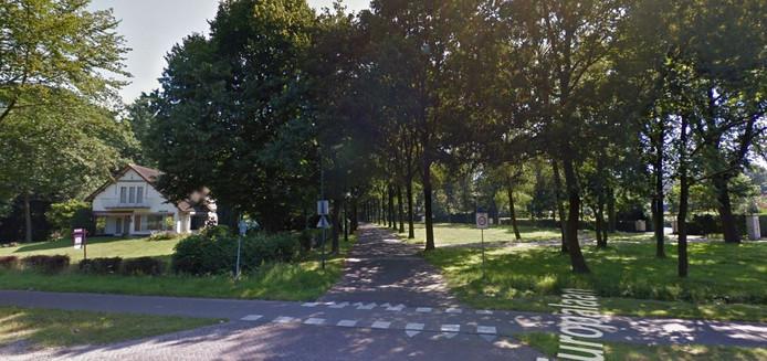 De Europalaan in Oisterwijk is een van de buurten waar 75 procent van de woningen duurder is dan een miljoen.