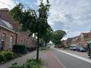 Weurtseweg Nijmegen