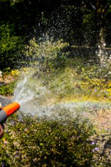 Waar moeten we rekening mee houden bij droge tuinen?