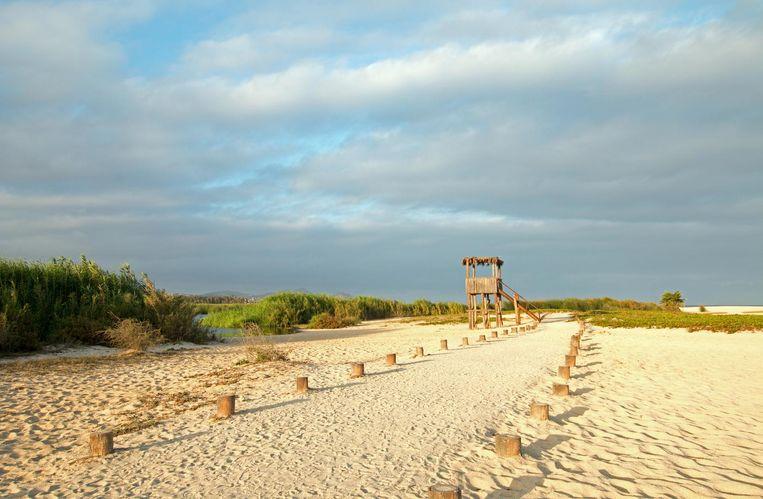 Het San Jose del Cabo Estuary. Het schiereiland heeft een van de beste stranden van Mexico. Beeld Thinkstock