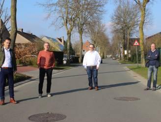 Bomen in Nieuwstraat moeten er uit, maar worden wel meteen vervangen