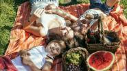 Leuke gadgets voor de ideale picknick