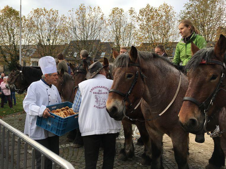 Dierenwijding in Oostakker: gewijde mastellen voor mens en dier.