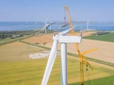 Hijswerk op hoog niveau: windmolens in opbouw bij Kamperland