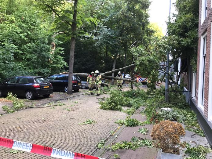 Brandweerlieden zagen de omgevallen boom aan het Molenwater in Middelburg in stukken.