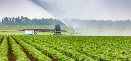 Is deze simpele vondst voor boeren en natuurbeheerders dé oplossing tegen extreme droogte?