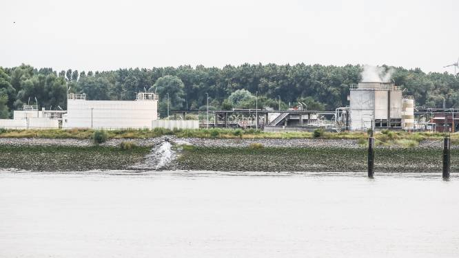 Zelfs milieu-inspectie zag probleem niet met illegale lozing 3M