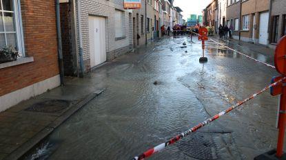 Herstellingwerken aan waterleiding Rodestraat begonnen