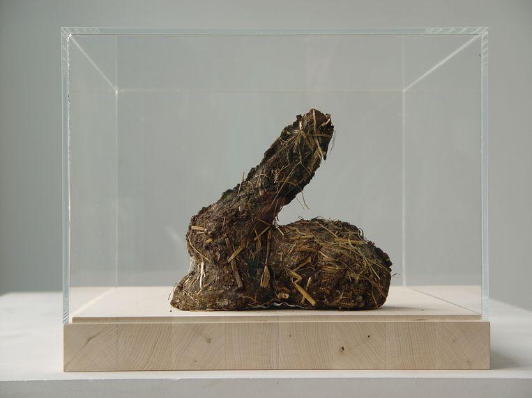 Dieter Roth: Rabbit-Shit-Rabbit, 1972. Beeld