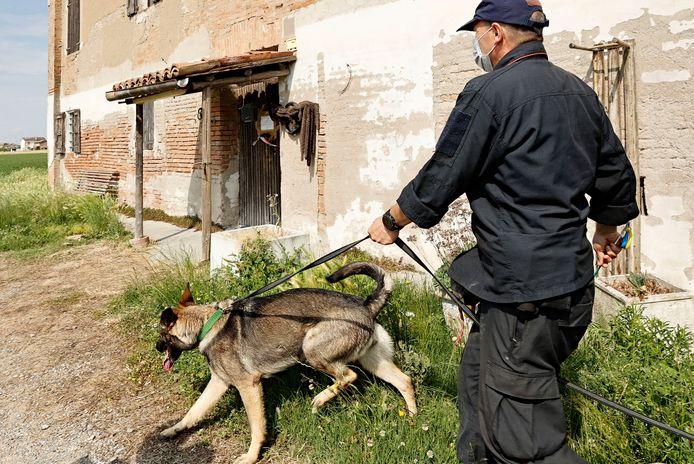 Archieffoto 2 juni: een speurhond zoekt in de omgeving van de woning van een neef van Saman.