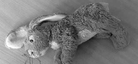 Tielenaar (51) gaf meisje (4) knuffelkonijn met foto van zijn penis: werkstraf en contactverbod