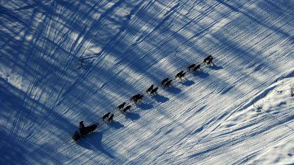 Zwaarste (en zeer omstreden) hondenrace ter wereld van start in Alaska