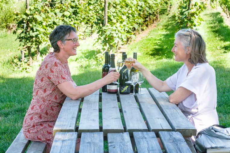 Een absolute aanrader: wijn proeven in Heuvelland, op de flanken van de West-Vlaamse heuvels.