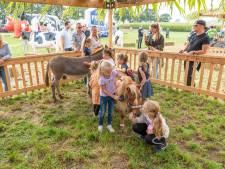 Geen bierwagen, maar wel pony's knuffelen en trekkers kijken op aangepaste Boerendag