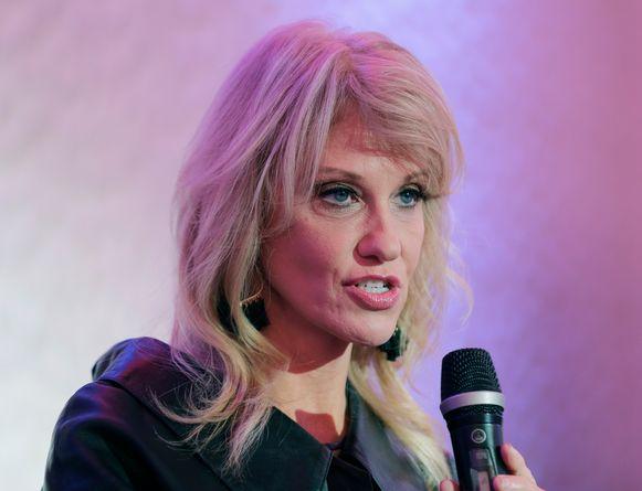 Kellyanne Conway probeerde de Democraten gerust te stellen tijdens een interview met Fox News.
