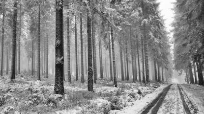 Sneeuw op komst: tot enkele centimeters zondag