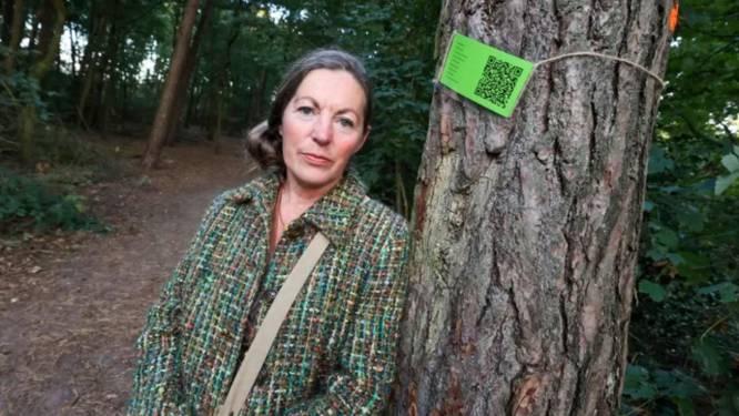 Tweede motie moet Sonse bossen 'redden', Yolanda zamelde al ruim 700 handtekeningen in