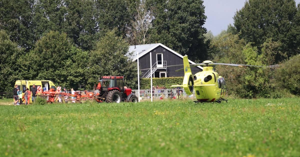 Meisje raakt gewond bij ongeluk met paard op vakantieboerderij in Otterlo.
