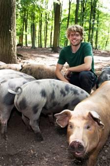 Deze bosvarkens zorgen voor duurzaam natuurbeheer én een hele smakelijke droge worst