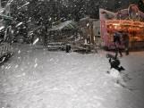 Winterevenement Den Bosch weer op losse schroeven, Stichting Winterland woedend over 'onbehoorlijke bestuur'