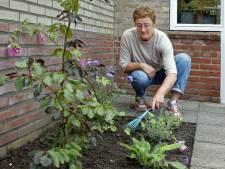Een groenere tuin, met of zonder het NK Tegelwippen