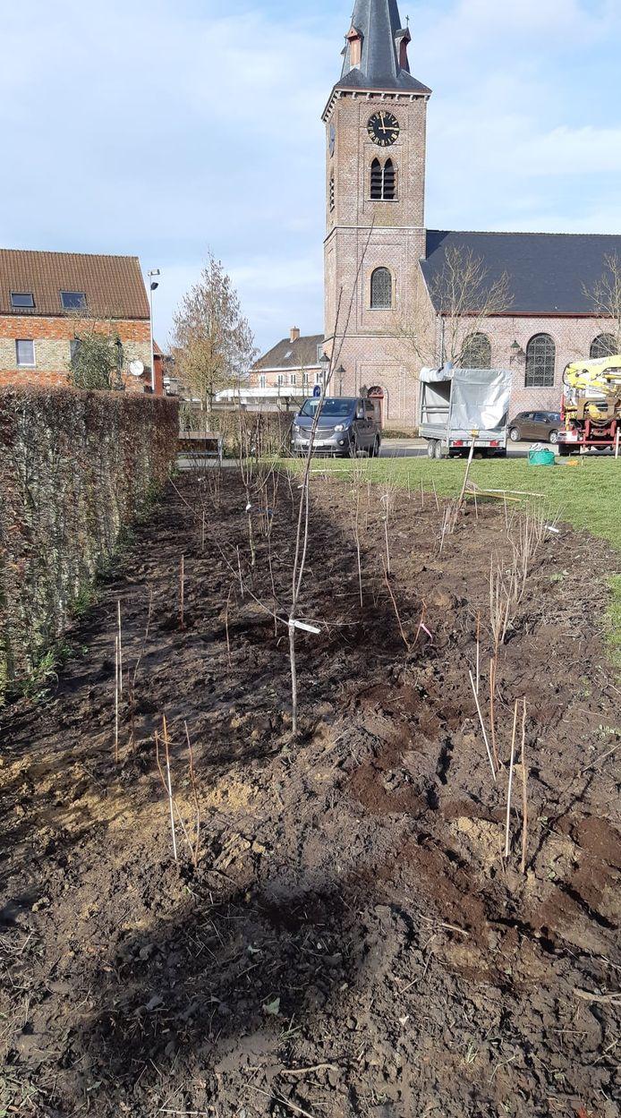 De meeste bomen en struiken werden op een perceeltje in de schaduw van de kerk geplant.