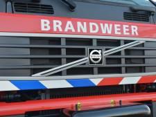 Brandweer uitgerukt voor zwemmer die niet uit gracht in Middelburg wil komen