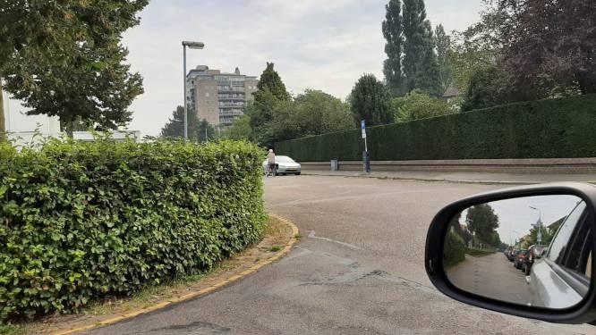 Zorgen om hoge haag bij hondenveld in Den Bosch Zuid: 'Het is wachten op ongelukken'