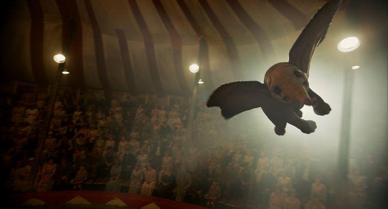 Dumbo. Beeld AP
