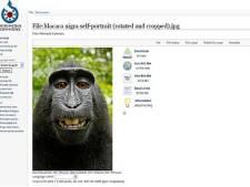 Wikimedia wil fotograaf niet betalen voor aap-selfie