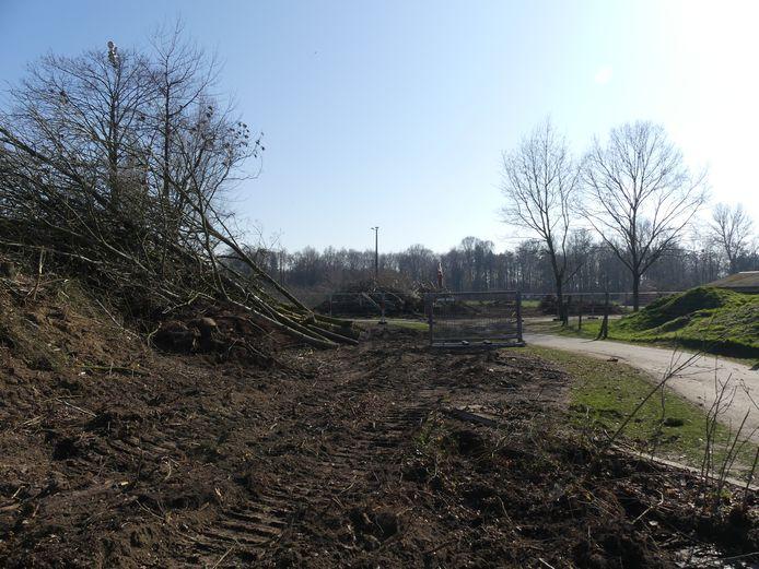 Aan de ingang van de Brielmeersen ter hoogte van de atletiekpiste werden heel wat bomen gerooid.